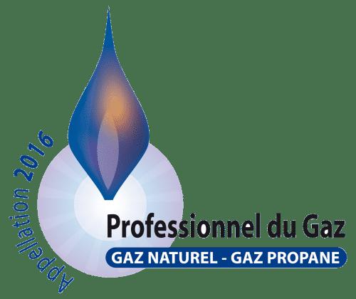 logo_pg2016